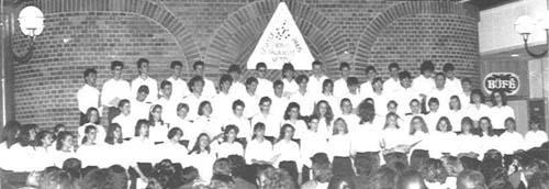 1991. Vetési Albert Gimnázium